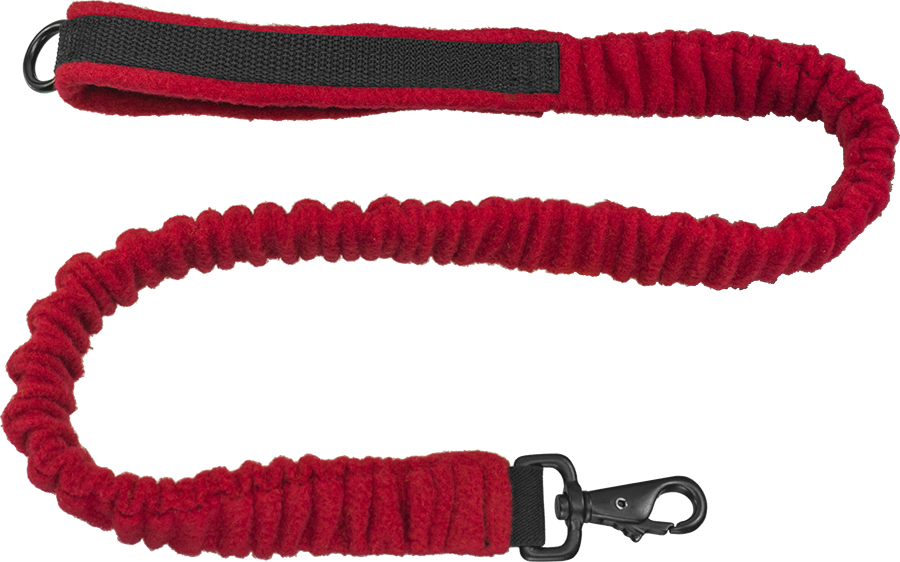 EEZWALKER Bungee Leash