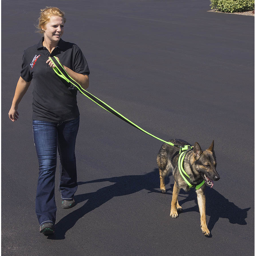EEZWALKER Built-In Poop Bag Dog Leash